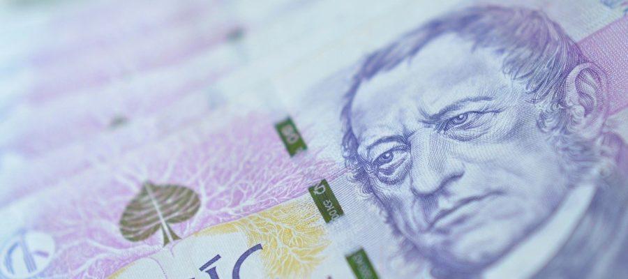Money Crown Payment Profits